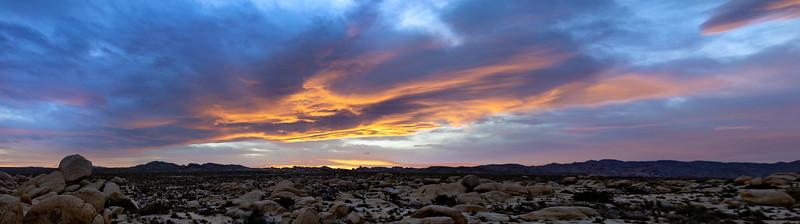 Joshua Tree Sunset Panoramic