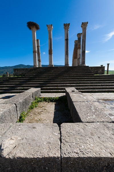 Ruins of Volubilis lie scattered in the Moroccan countryside - Morocco - Volubilis