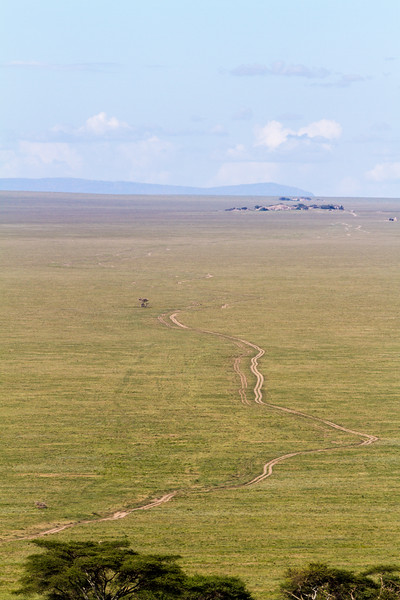 View of landscape - East Africa - Tanzania