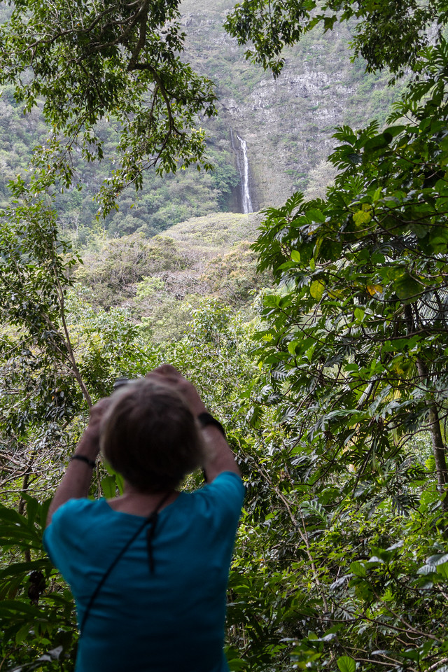 Woman talking photograph of nature - USA - Hawaii