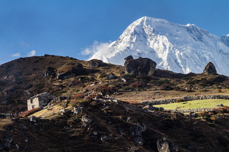 Himalayan Farm House And Pasture In Front Of Cho Oyu, Nepal, Himalayas, Asia