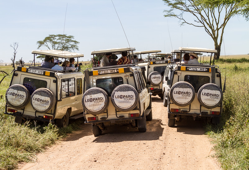 Tourist in off road vehicle - East Africa - Tanzania