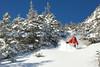 Green Mountains, Vermont - Skier: Dan Smith