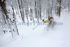 Mad River Glen<br /> Skier: Emily Johnson