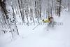 Mad River Glen<br /> Skier: Emily Johnson