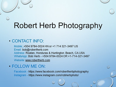 Robert Herb Photography - slide - 070420-2