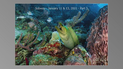 Subway - Jan 11 & 13, 2021 - Part 3_mp4