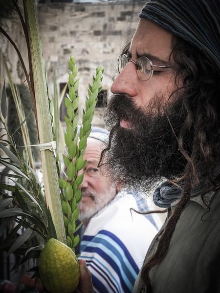 Bearded Jew Kotel
