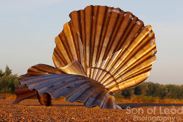 Maggi Hambling's clam shell