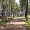 Roseislle Forest and Beach - 07