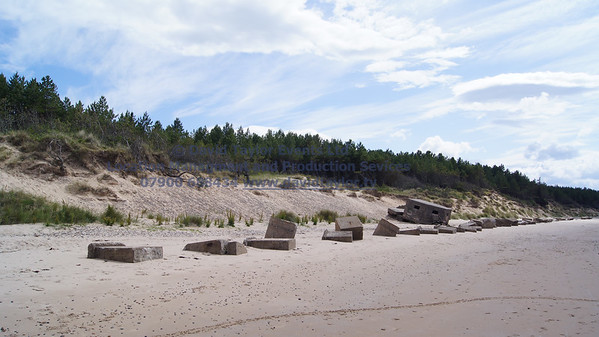 Roseislle Forest and Beach - 26