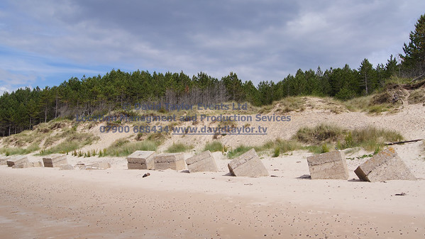 Roseislle Forest and Beach - 17