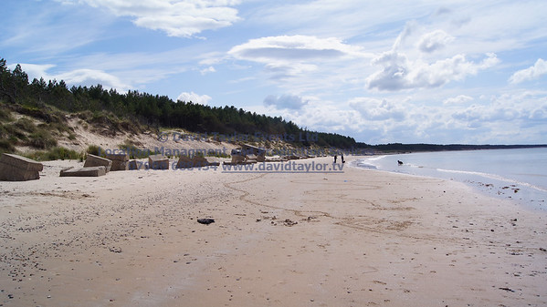 Roseislle Forest and Beach - 09