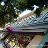 Blue Boutique 2007