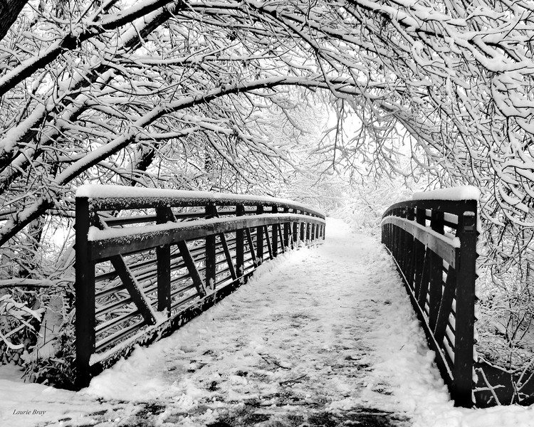 HIdden Hollow Bridge 16x20