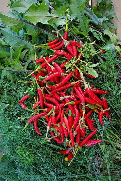 Dill, chili peppers & red mizuna straight from Holoholo Farm.  © 2018 Sugar + Shake