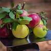 Fruit in Fruita (Capitol Reef National Park). © 2013 Sugar + Shake