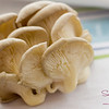 Fresh mushrooms are so pretty! © 2012 Sugar + Shake