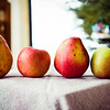 Fruit lineup. Pears and apples. © 2012 Sugar + Shake