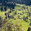 Campos de Grindelwald
