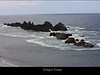 The coast of the Pacific Northwest of the U.S. is famous for its craggy rocks and islands.  Marine mammals and birds nest and feed around these rocks.