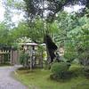 Kenrokuen; Kanazawa, Japan; October, 2007