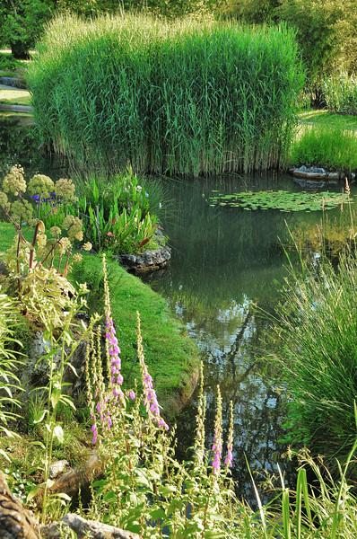 Genève - Jardin botanique - Flore de Chine et du Japon