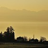 L'aube du lac Léman depuis Bursinel