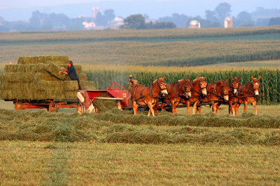 Amish Country, Lancaster, Pa.