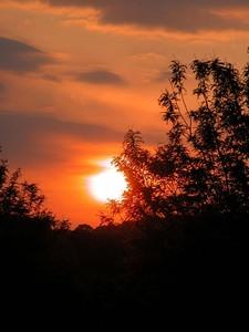 Cincinnati Sunset