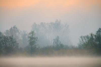 """""""Barwy mgły"""""""
