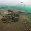 Puunrunko Röykän rannassa