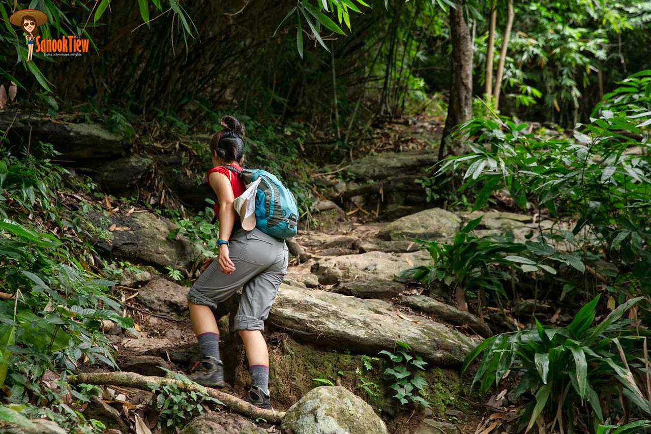 เดินป่าเขาหลวงสุโขทัย ขึ้นเขาหลวงสุโขทัย อุทยานแห่งชาติรามคำแหง