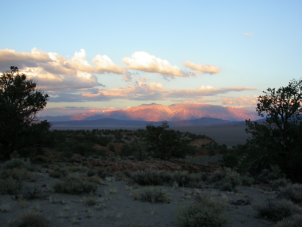 Summer 2007, Rhyolite Camp, California.