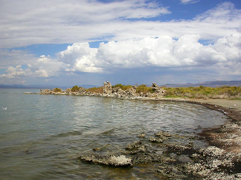 Summer 2007, Mono Lake, California.