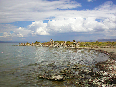 Summer 2007, Mono Lake, California.