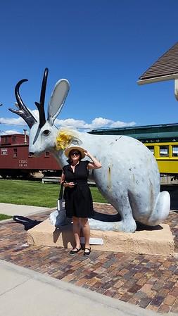 Wyoming State Fair 2015