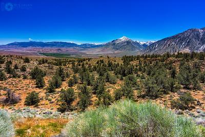 Overlooking Owens Valley, California Rt. 395, June 14, 2016.