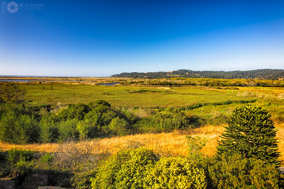 Humboldt Bay National Wildlife Refuge.