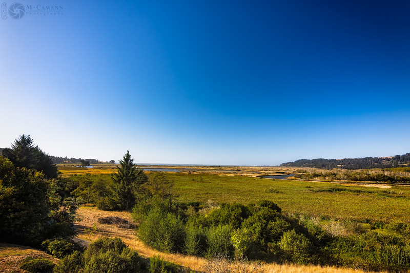 Humboldt Bay National Wildlife Refuge, September 2016.  The view from the front porch of the Magic Palace.
