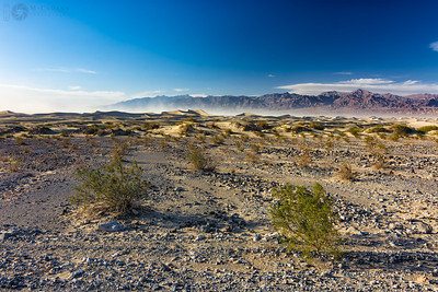 Mesquite Flats dunes, Death Valley, California.