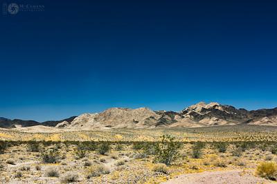 Mojave Desert, Kelbaker Road, California.