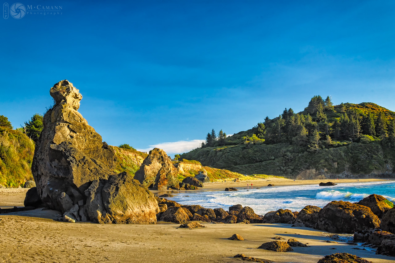 Trinidad State Beach, California.