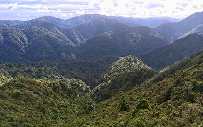 View from the South Sandle in Rimutaka Range