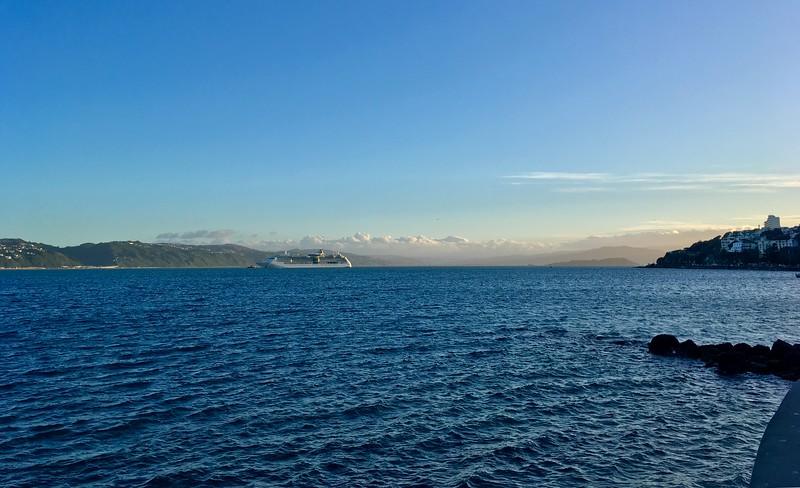Waitangi Day cruise