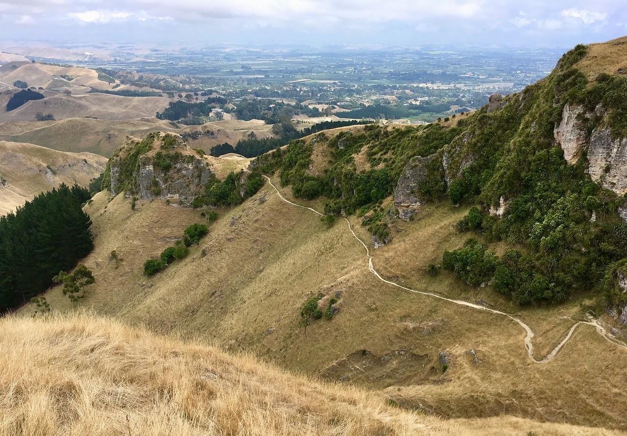 Te Mata Peak park... so many fun trails
