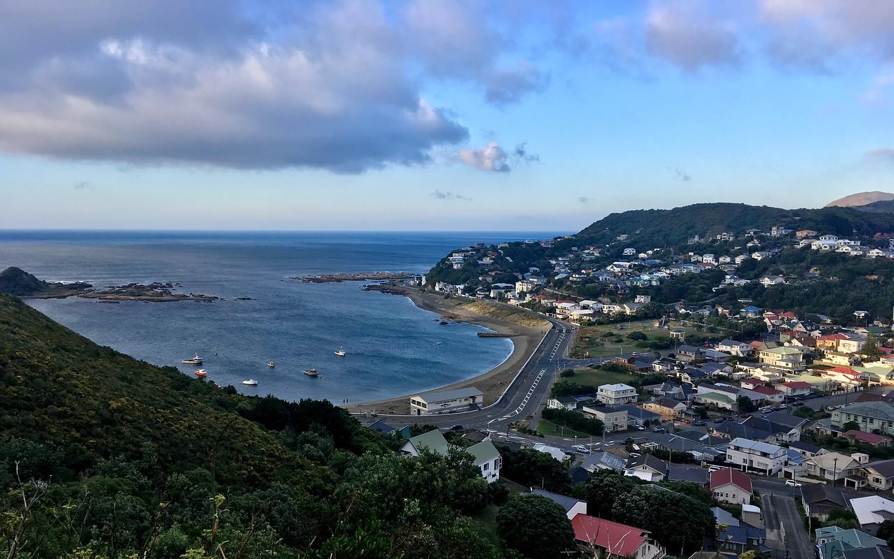 Island Bay morning views