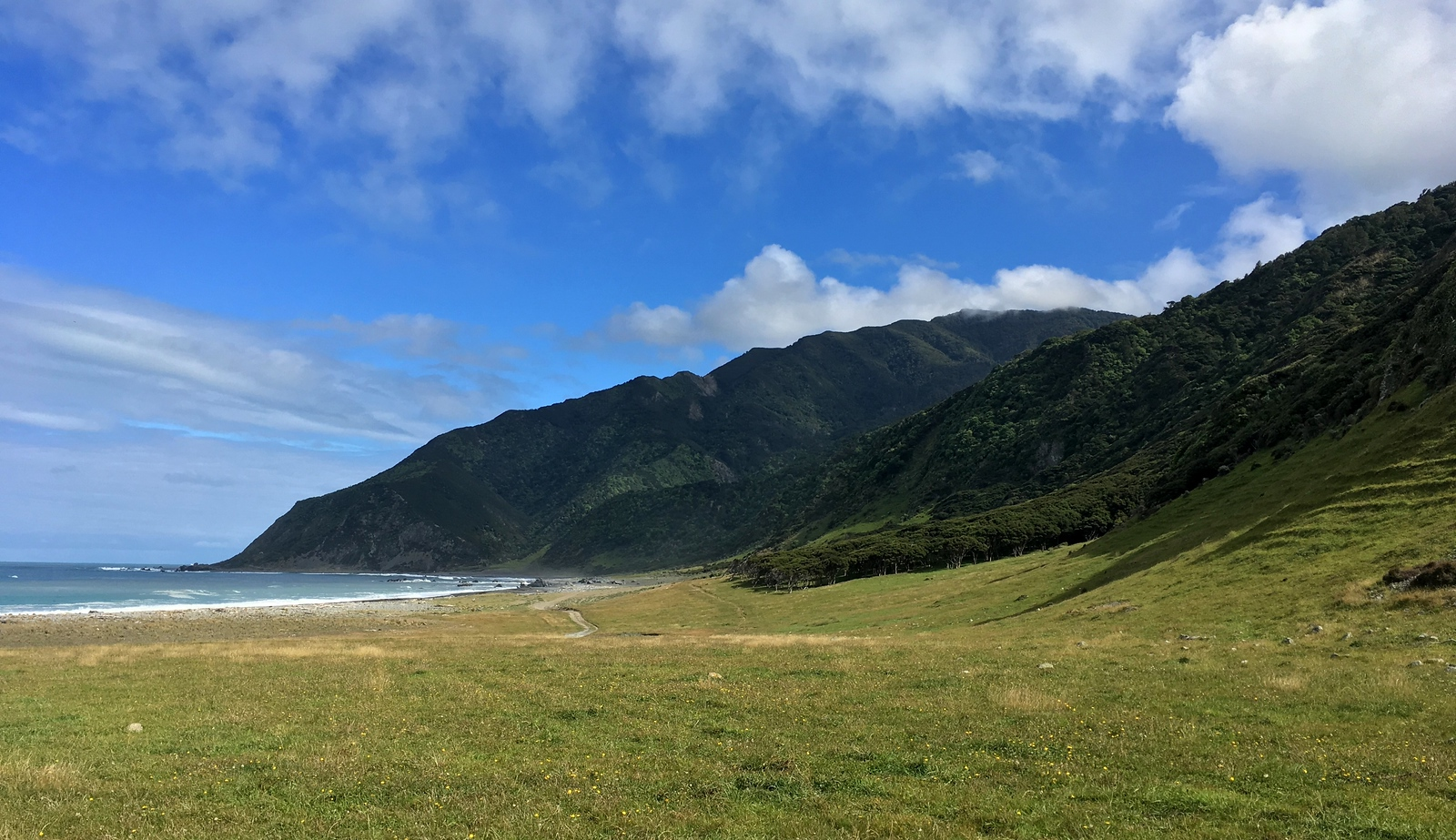 Getting to the Wild Coast Track