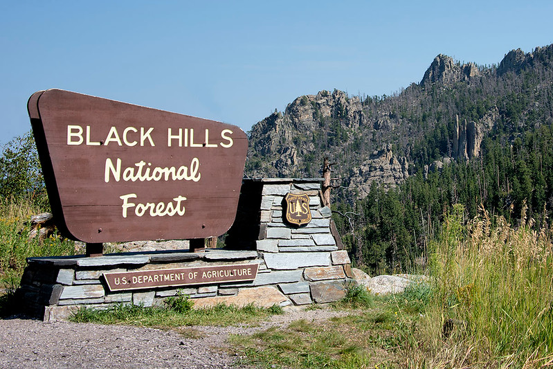 Needles Highway is located in the Black Hills National Forest and is part of the Custer State Park