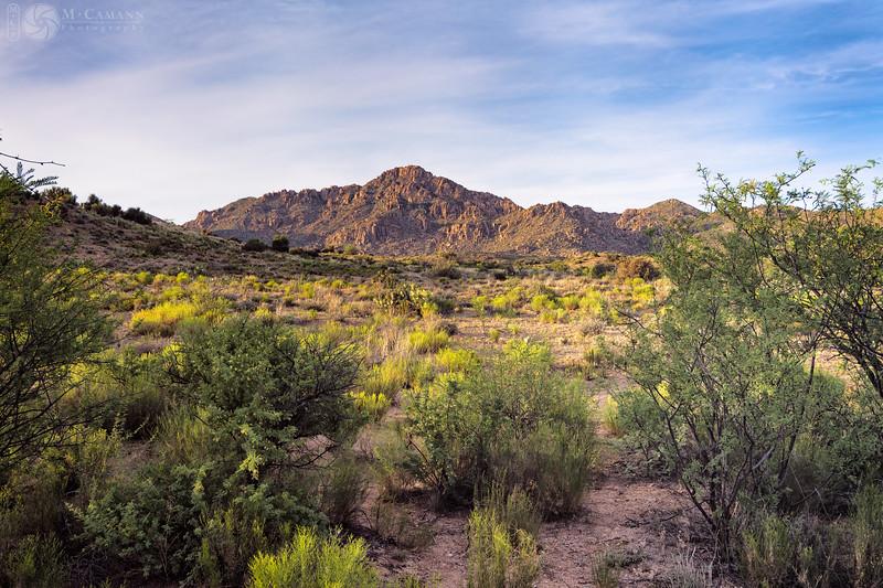 Yavapai County, Arizona, June 3, 2017.